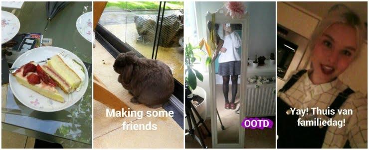 PicMonkey Collage-28