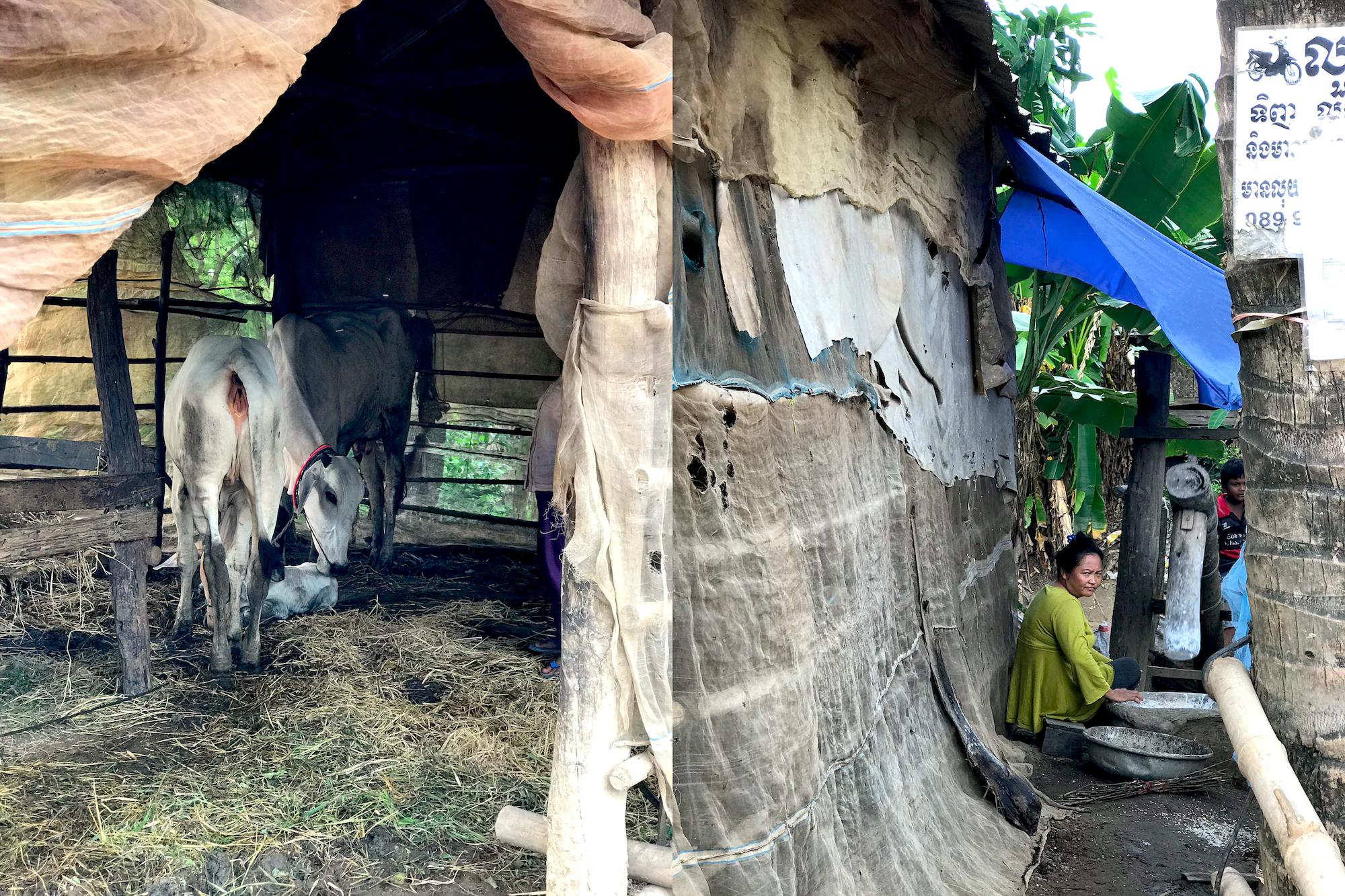 cambodja-7